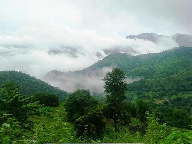 Araku Valley During Monsoon