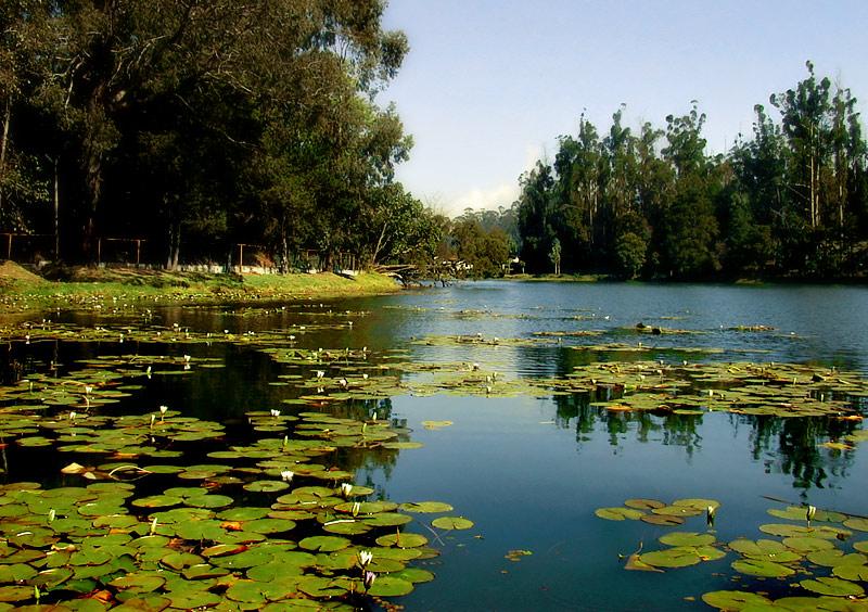 kodaikanal lake1