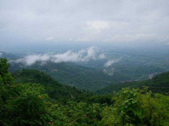 morni hills1