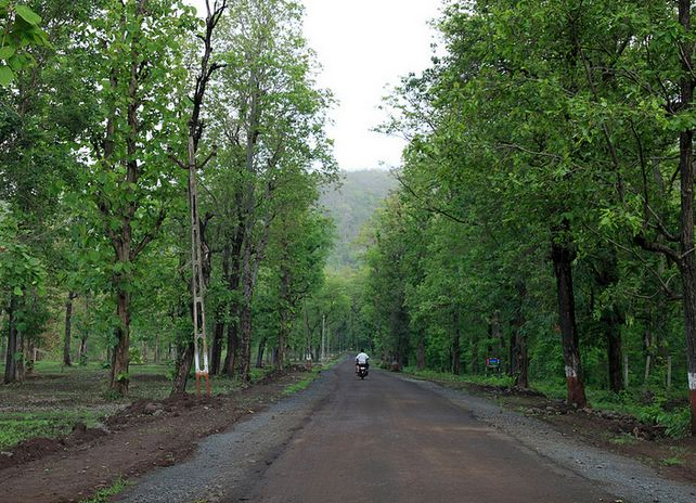 Road To Saputara