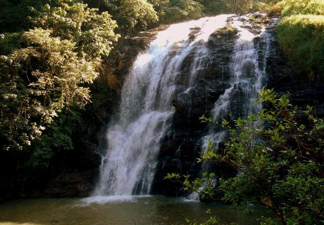 Coorg in Autumn