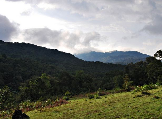 Diwali Holidays in Coorg