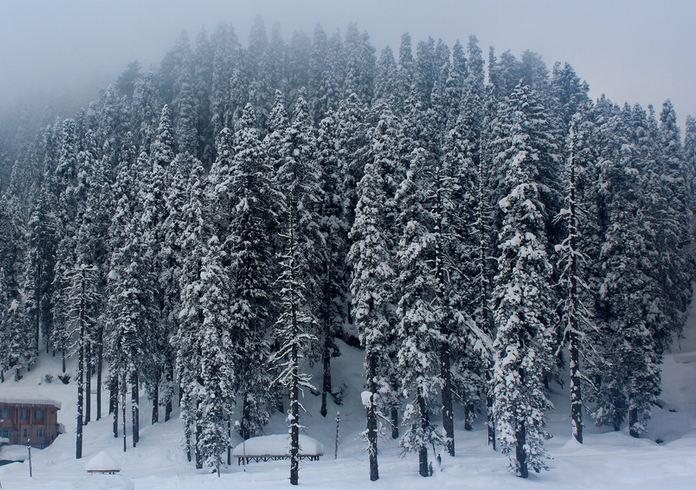 winter honeymoon india