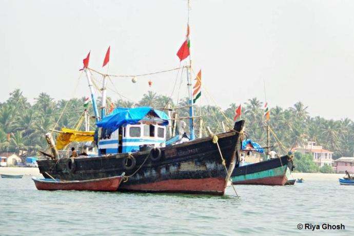 Fishermen Boats Anchored at Tarkarli