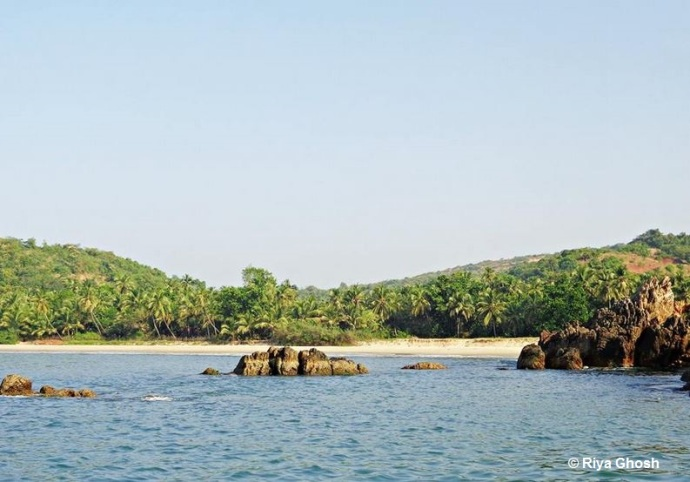 Tarkarli Beach View