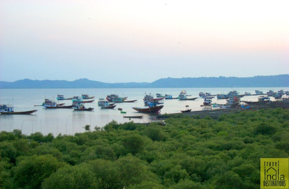 Fishing Boats in Vasai